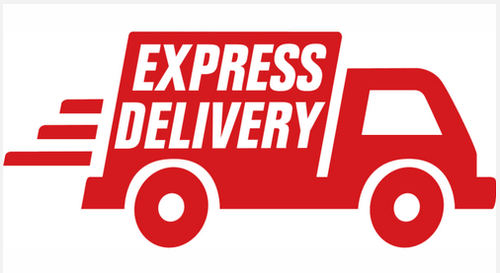 EXPRESS COURIERS